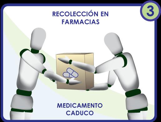 Proceso recolección SINGREM
